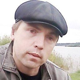 Николай, 36 лет, Брейтово