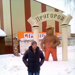 Николай, 58 лет, Лотошино