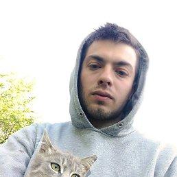 Алексей, 28 лет, Белая Церковь