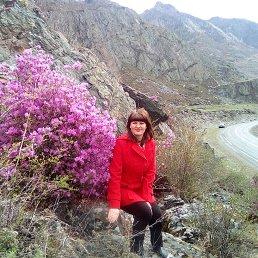 Диана, 34 года, Заринск