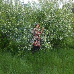 Юлия, 57 лет, Лозовая