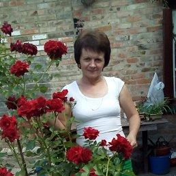 Елена, 53 года, Александрия