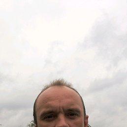 Михаил, 46 лет, Клин