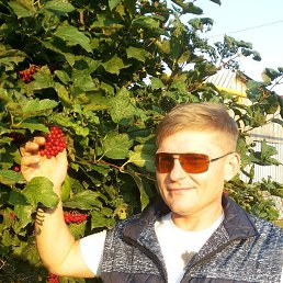 Николай, 40 лет, Лямбирь