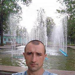 Сергей, Барановка, 36 лет