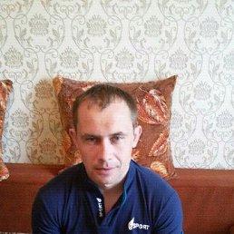 алексей, 28 лет, Коченево