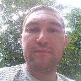 Саша, 28 лет, Матвеев Курган