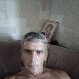 Михаил, 44 года, Псков