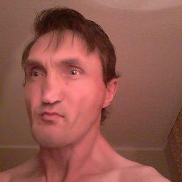 Андрей, 41 год, Борщев