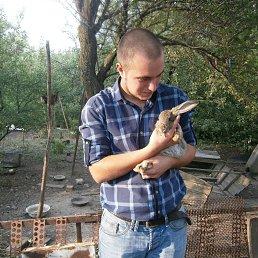Богдан, 25 лет, Мариуполь