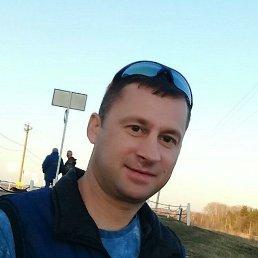 Дмитрий, 40 лет, Курск
