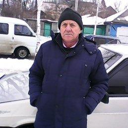 Владимир, 63 года, Балта
