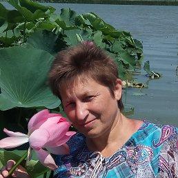 Любовь Смирнова, , Тверь