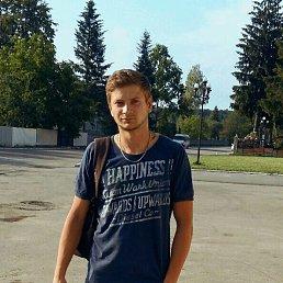 Андрій, 24 года, Коломыя