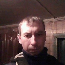 Денис, 32 года, Порхов