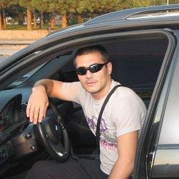 Дмитрий, 41 год, Покров