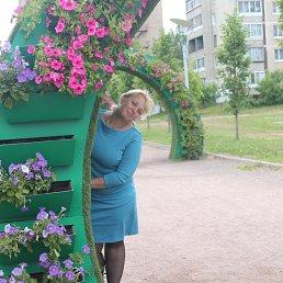 Ольга, 43 года, Боровичи