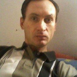 николай, 46 лет, Рощино
