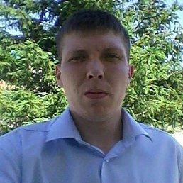 Александр, 26 лет, Белокуриха