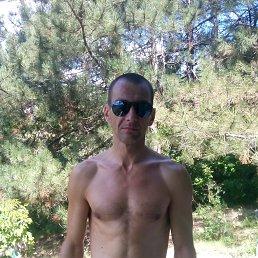 Александр, 41 год, Курахово