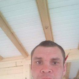 Иван, 33 года, Манжерок