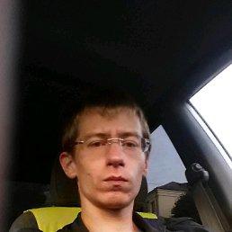 dima, 28 лет, Солнечногорск