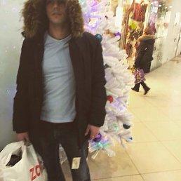 Никита, 30 лет, Ивантеевка
