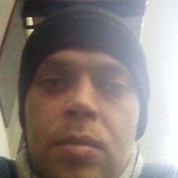 Дмитрий, 29 лет, Новотроицк