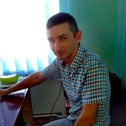 Андрій, 35 лет, Новомиргород