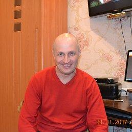 Юра, 40 лет, Бердичев