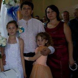 Андрій, 46 лет, Бережаны