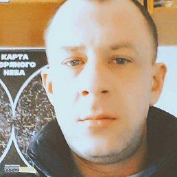 Andrey, 36 лет, Сокиряны