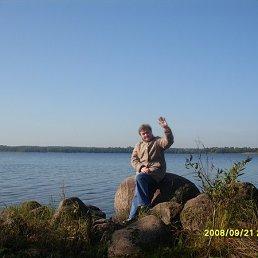 Галина, 64 года, Луга