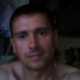 Alexei, 41 год, Городок
