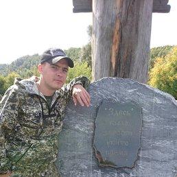 Дмитрий, 29 лет, Прокопьевск