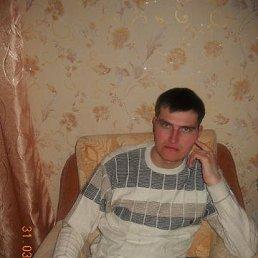 Дмитрий, 33 года, Новоегорьевское