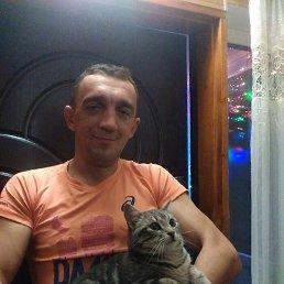 Іван, 33 года, Любар