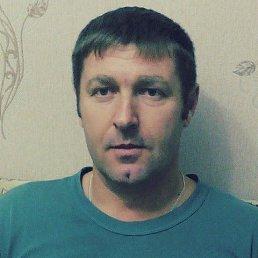 Сергей, 48 лет, Навля