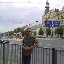 Сергей, 47 лет, Мелитополь