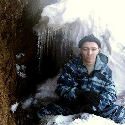 Николай, 29 лет, Казанская