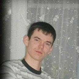 Дима, 28 лет, Советск