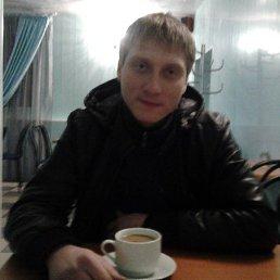 Денис, 29 лет, Ровеньки