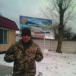Андрей, 44 года, Каменское