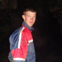 андрей, 28 лет, Далматово