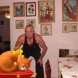Вася, 61 год, Перечин