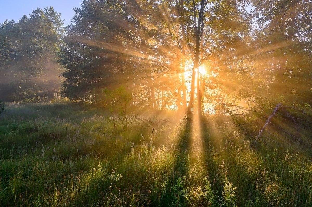 поздравление с первыми лучами солнца прекрасное