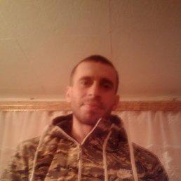 Макс, 34 года, Красноармейск