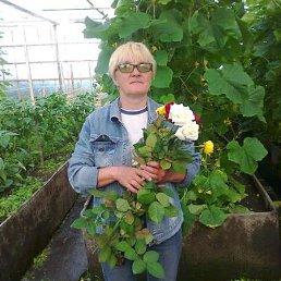 Людмила, 64 года, Шарыпово
