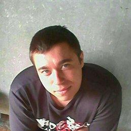 Николай, 26 лет, Кулунда