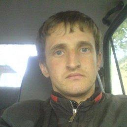 Віктор, 36 лет, Устилуг